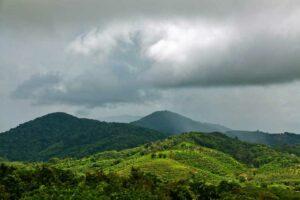 Palaw in der Regenzeit, Myanmar