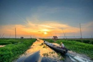 Die schwimmenden Gärten vom Inle See. Myanmar (Burma)