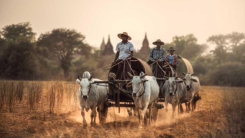 myanmar reiseinformationen einreise nach myanmar landweg